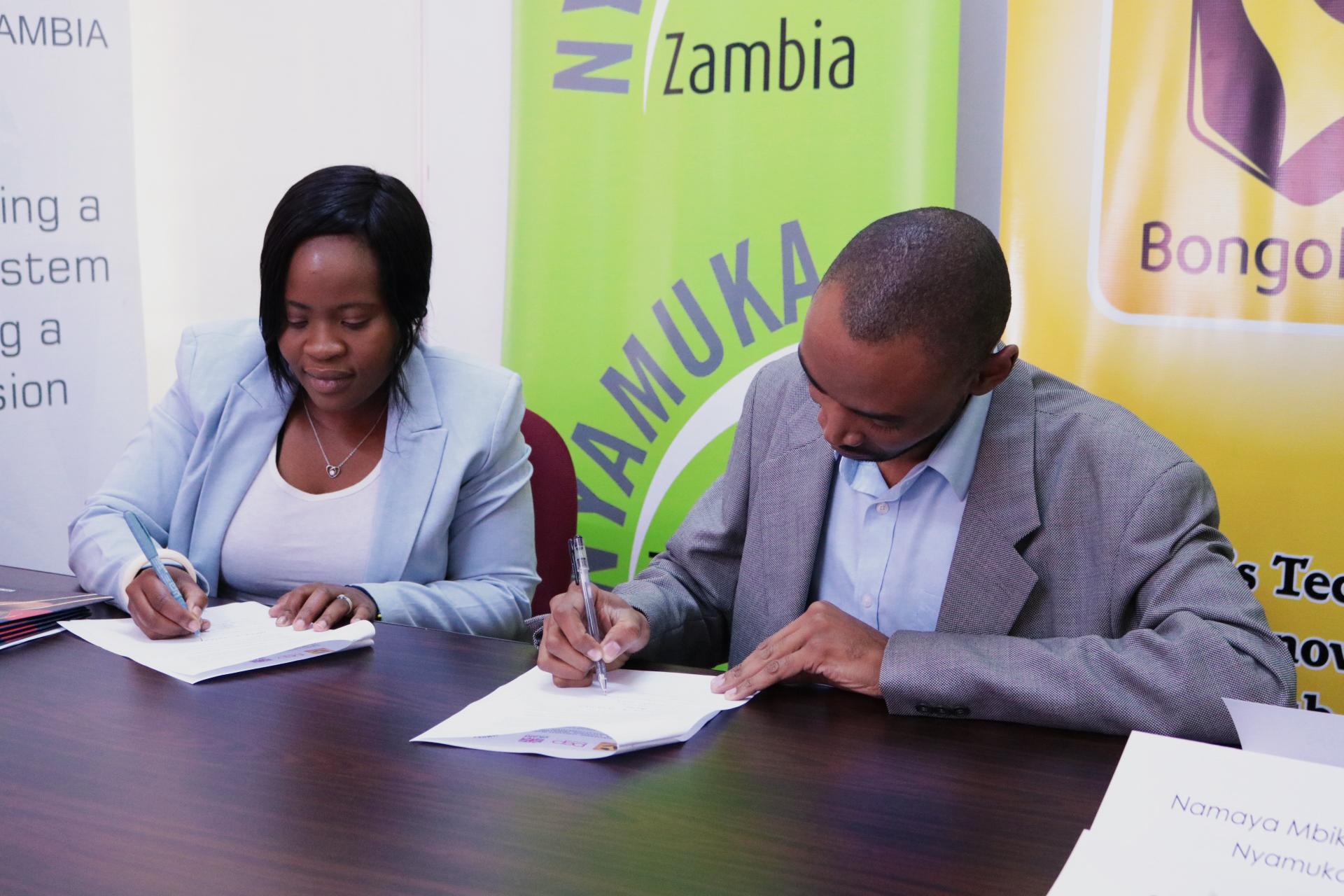 nyamuka zambia business plan