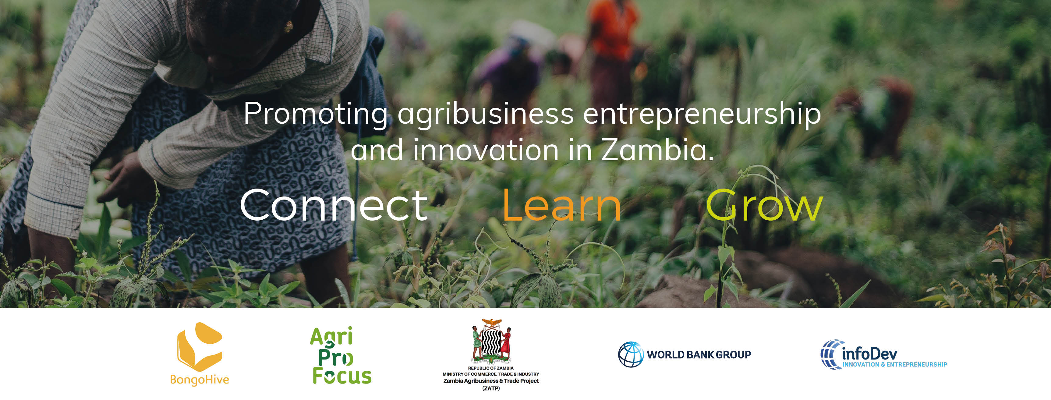 Call for Applications: The AgriBusiness Bootcamp Zambia
